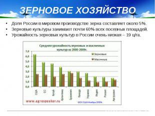 ЗЕРНОВОЕ ХОЗЯЙСТВО Доля России в мировом производстве зерна составляет около 5%.