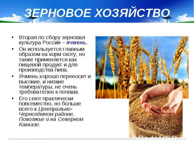 ЗЕРНОВОЕ ХОЗЯЙСТВО Вторая по сбору зерновая культура России – ячмень. Он используется главным образом на корм скоту, но также применяется как пищевой продукт и для производства пива. Ячмень хорошо переносит и высокие, и низкие температуры, не очень …