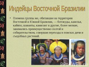 Племена группы же, обитавшие на территории Восточной и Южной Бразилии, — ботокуд