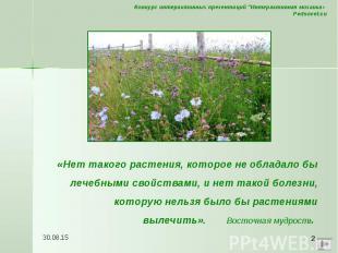 «Нет такого растения, которое не обладало бы лечебными свойствами, и нет такой б