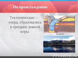 По происхождению Тектонические – озера, образовались в трещине земной коры