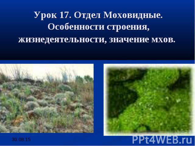 Урок 17. Отдел Моховидные. Особенности строения, жизнедеятельности, значение мхов.