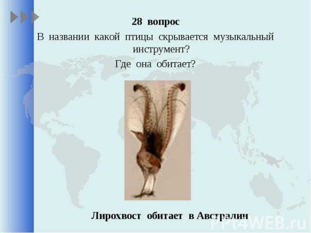 28 вопрос 28 вопрос В названии какой птицы скрывается музыкальный инструмент? Где она обитает?