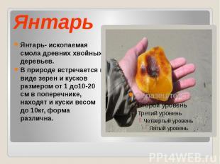 Янтарь Янтарь- ископаемая смола древних хвойных деревьев. В природе встречается