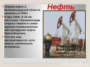 Нефть Поиски нефти в Калининградской области начались в 1955г. В мае 1968г. В 36
