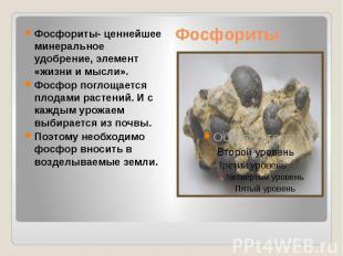 Фосфориты Фосфориты- ценнейшее минеральное удобрение, элемент «жизни и мысли». Ф