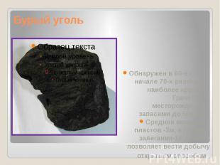 Бурый уголь Обнаружен в 60-е гг., а в начале 70-х разведано наиболее крупное- Гр