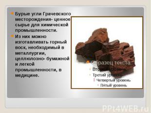 Бурые угли Грачевского месторождения- ценное сырье для химической промышленности