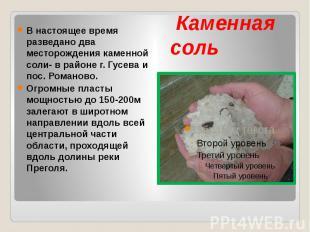 Каменная соль В настоящее время разведано два месторождения каменной соли- в рай