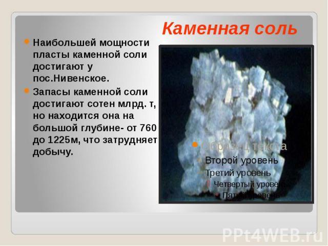 Наибольшей мощности пласты каменной соли достигают у пос.Нивенское. Запасы каменной соли достигают сотен млрд. т, но находится она на большой глубине- от 760 до 1225м, что затрудняет добычу.