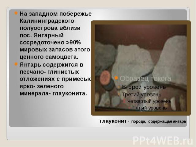 На западном побережье Калининградского полуострова вблизи пос. Янтарный сосредоточено >90% мировых запасов этого ценного самоцвета. Янтарь содержится в песчано- глинистых отложениях с примесью ярко- зеленого минерала- глауконита.