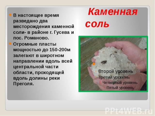 Каменная соль В настоящее время разведано два месторождения каменной соли- в районе г. Гусева и пос. Романово. Огромные пласты мощностью до 150-200м залегают в широтном направлении вдоль всей центральной части области, проходящей вдоль долины реки П…