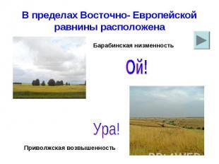 В пределах Восточно- Европейской равнины расположена