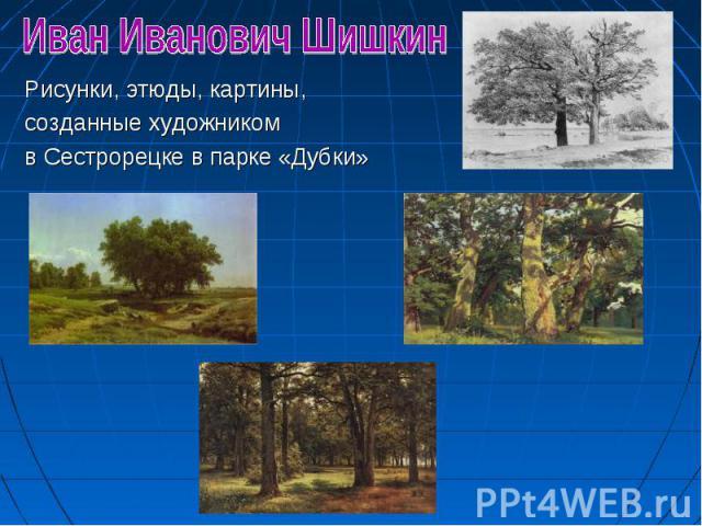 Рисунки, этюды, картины, Рисунки, этюды, картины, созданные художником в Сестрорецке в парке «Дубки»