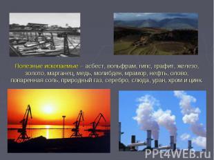 Полезные ископаемые – асбест, вольфрам, гипс, графит, железо, золото, марганец,