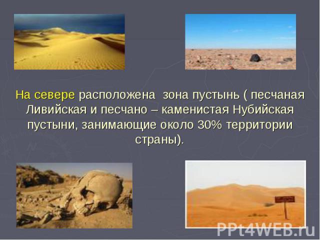 На севере расположена зона пустынь ( песчаная Ливийская и песчано – каменистая Нубийская пустыни, занимающие около 30% территории страны).