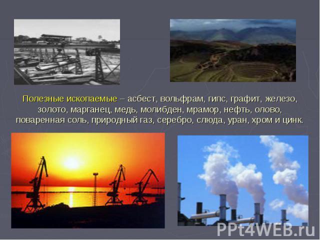 Полезные ископаемые – асбест, вольфрам, гипс, графит, железо, золото, марганец, медь, молибден, мрамор, нефть, олово, поваренная соль, природный газ, серебро, слюда, уран, хром и цинк.