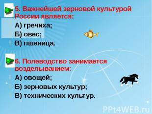 5. Важнейшей зерновой культурой России является: А) гречиха; Б) овес; В) пшеница
