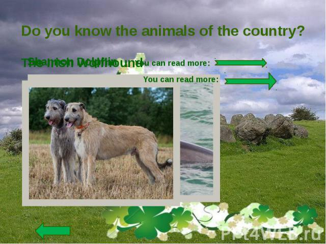 Do you know the animals of the country?