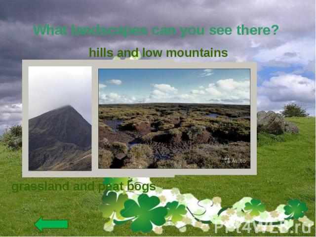 What landscapes can you see there?