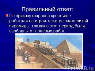 По приказу фараона крестьяне работали на строительстве знаменитой пирамиды, так