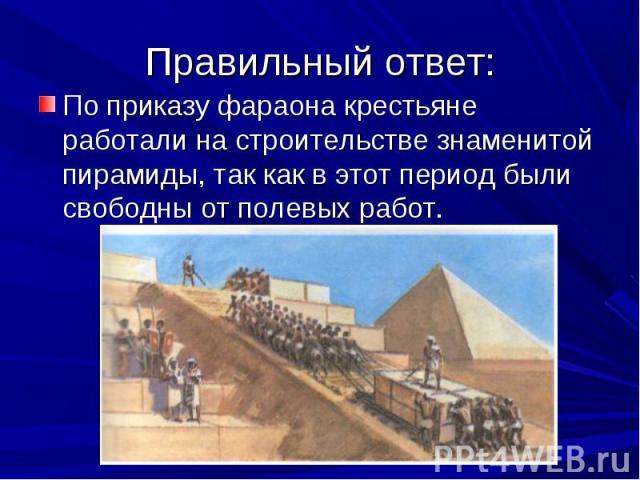 По приказу фараона крестьяне работали на строительстве знаменитой пирамиды, так как в этот период были свободны от полевых работ. По приказу фараона крестьяне работали на строительстве знаменитой пирамиды, так как в этот период были свободны от поле…