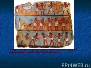 Иногда в рельефах и фресках представлены сцены повседневной трудовой жизни египт