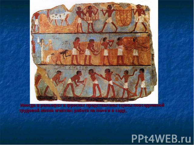 Иногда в рельефах и фресках представлены сцены повседневной трудовой жизни египтян: работа на поле и в саду, Иногда в рельефах и фресках представлены сцены повседневной трудовой жизни египтян: работа на поле и в саду,