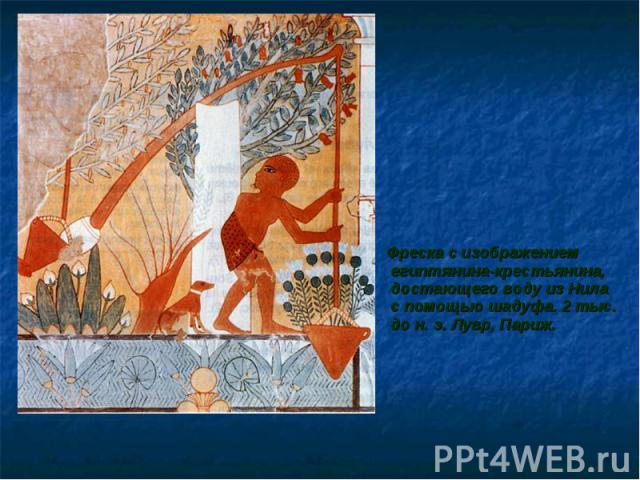 Фреска с изображением египтянина-крестьянина, достающего воду из Нила с помощью шадуфа. 2 тыс. до н. э. Лувр, Париж. Фреска с изображением египтянина-крестьянина, достающего воду из Нила с помощью шадуфа. 2 тыс. до н. э. Лувр, Париж.