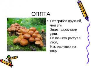 ОПЯТА Нет грибов дружней, чем эти, Знают взрослые и дети. На пеньках растут в ле