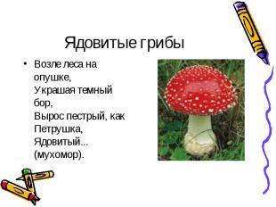 Ядовитые грибы Возле леса на опушке, Украшая темный бор, Вырос пестрый, как Петр