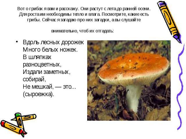 Вот о грибах я вам и расскажу. Они растут с лета до ранней осени. Для роста им необходимы тепло и влага. Посмотрите, какие есть грибы. Сейчас я загадаю про них загадки, а вы слушайте внимательно, чтоб их отгадать: Вдоль лесных дорожек Много белых но…