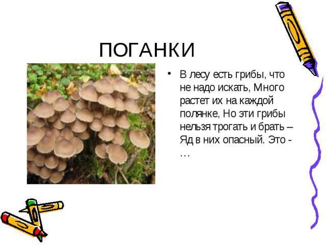 ПОГАНКИ В лесу есть грибы, что не надо искать, Много растет их на каждой полянке, Но эти грибы нельзя трогать и брать – Яд в них опасный. Это - …