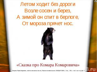 Летом ходит без дороги Возле сосен и берез, А зимой он спит в берлоге, От мороза