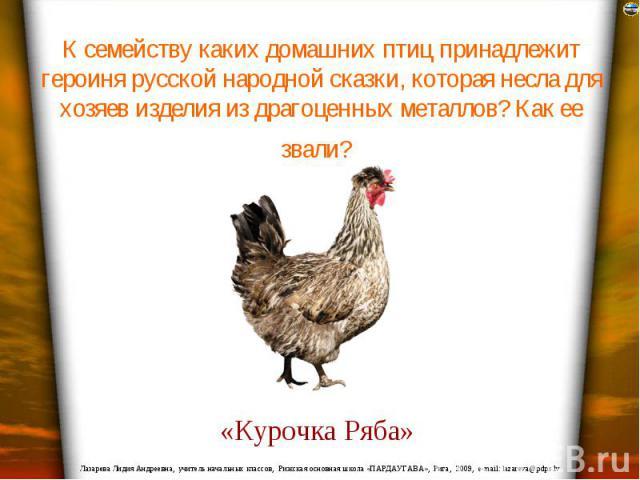 К семейству каких домашних птиц принадлежит героиня русской народной сказки, которая несла для хозяев изделия из драгоценных металлов? Как ее звали?