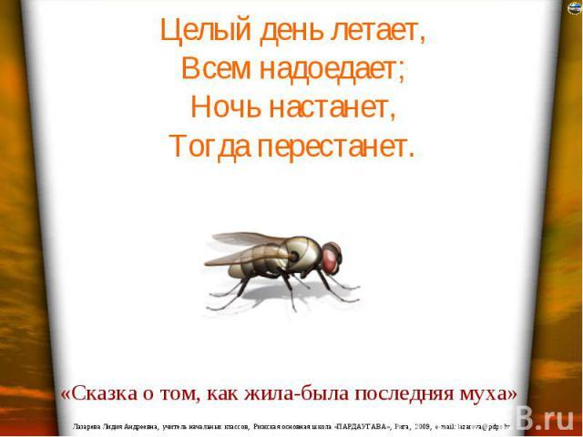 Целый день летает, Всем надоедает; Ночь настанет, Тогда перестанет.
