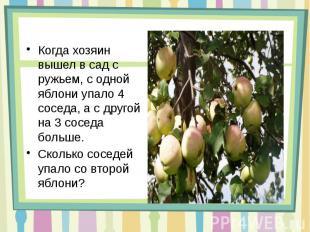 Когда хозяин вышел в сад с ружьем, с одной яблони упало 4 соседа, а с другой на