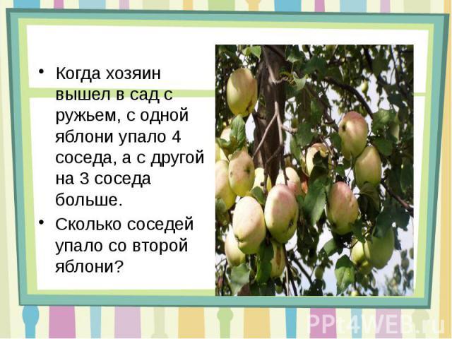 Когда хозяин вышел в сад с ружьем, с одной яблони упало 4 соседа, а с другой на 3 соседа больше. Сколько соседей упало со второй яблони?