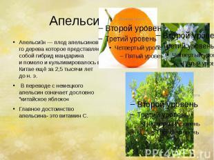 Апельсин. Апельси н—плодапельсинового деревакоторое пред
