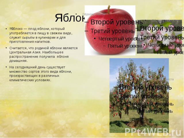 Яблоко. Я блоко—плод яблони, который употребляется в пищу в свежем виде, служит сырьём в кулинарии и для приготовления напитков. Считается, что родиной яблони является Центральная Азия. Наибольшее распространение получила яблоня домашняя…