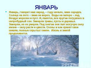 Январь, говорит наш народ, – году начало, зиме середка. Солнце на лето – зима на