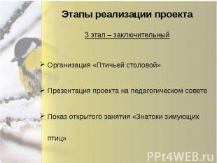 Этапы реализации проекта Организация «Птичьей столовой» Презентация проекта на п