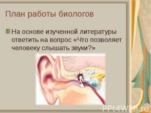 На основе изученной литературы ответить на вопрос «Что позволяет человеку слышат