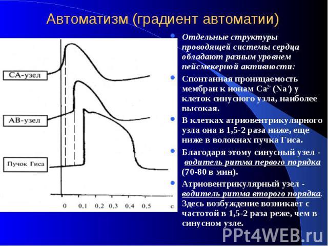 Автоматизм (градиент автоматии) Отдельные структуры проводящей системы сердца обладают разным уровнем пейсмекерной активности: Спонтанная проницаемость мембран к ионам Ca2+ (Nа+) у клеток синусного узла, наиболее высокая. В клетках атриовентрикулярн…