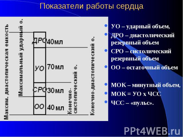 Показатели работы сердца УО – ударный объем, ДРО – диастолический резервный объем СРО – систолический резервный объем ОО – остаточный объем МОК – минутный объем, МОК = УО х ЧСС ЧСС – «пульс».