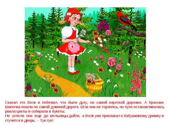 Сказал это Волк и побежал, что было духу, по самой короткой дорожке. А Красная Шапочка пошла по самой длинной дороге. Шла она не торопясь, по пути останавливалась, рвала цветы и собирала в букеты. Не успела она еще до мельницы дойти, а Волк уже прис…
