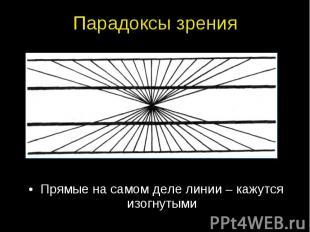 Прямые на самом деле линии – кажутся изогнутыми Прямые на самом деле линии – каж