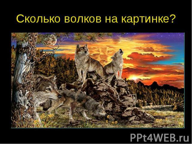 Сколько волков на картинке?