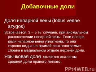 Добавочные доли Доля непарной вены (lobus venae azygos) Встречается 3 – 5 % случ
