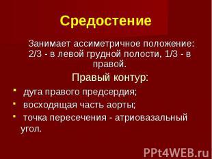 Средостение Занимает ассиметричное положение: 2/3 - в левой грудной полости, 1/3